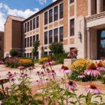 Mitchell Hamline enrolls record number of Native American students